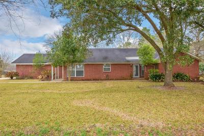 Pearland Single Family Home For Sale: 3904 Longherridge Drive