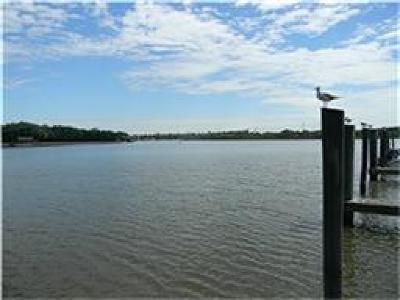 Harris County Condo/Townhouse For Sale: 18809 Egret Bay Boulevard #223