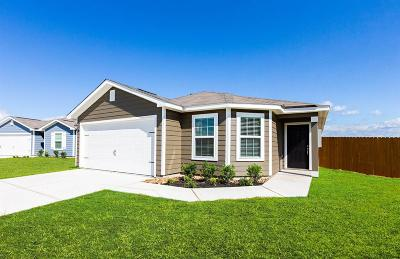 Magnolia Single Family Home For Sale: 27036 Leonardo Drive