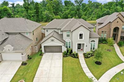 Sugar Land Single Family Home For Sale: 5310 Clouds Creek Lane