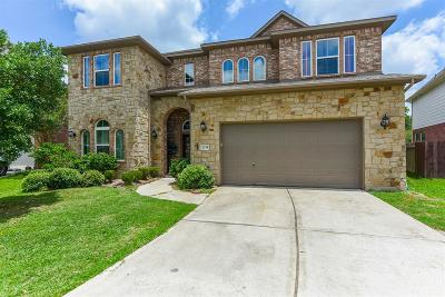 Friendswood Single Family Home For Sale: 1234 Abigail Lane