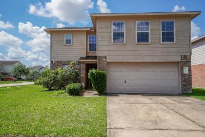 Katy Single Family Home For Sale: 19203 Anthurium Court