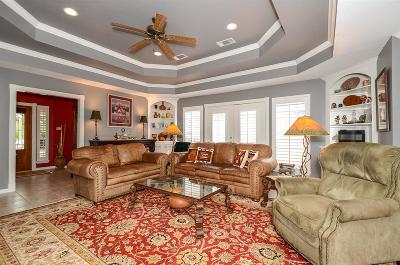 Houston Single Family Home For Sale: 1911 Emerald Green Drive