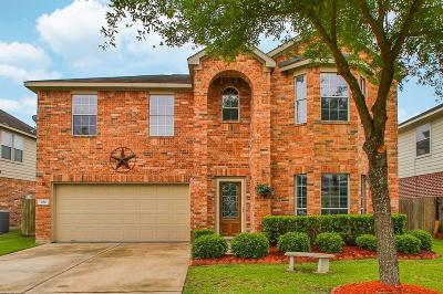 Manvel Single Family Home For Sale: 3010 Texas Trail Lane