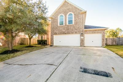 Tomball Single Family Home For Sale: 8335 Terra Valley Lane