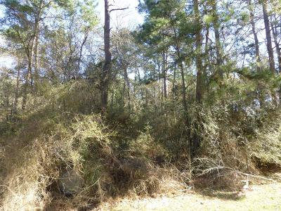 Hockley Residential Lots & Land For Sale: 28910 Joseph Road
