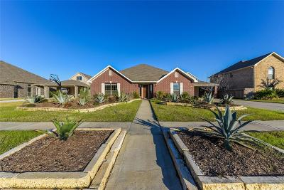 Manvel Single Family Home For Sale: 6623 Marble Falls Lane
