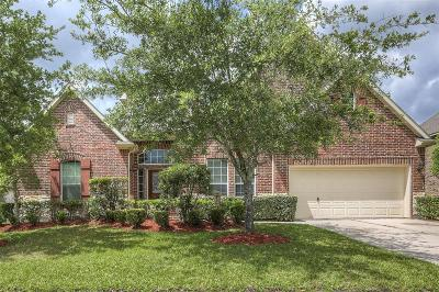 Pearland Single Family Home For Sale: 2952 Auburn Woods Drive