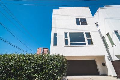 Houston Single Family Home For Sale: 503 White Street