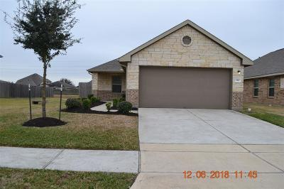 Katy Single Family Home For Sale: 3511 Goldleaf Trail Drive