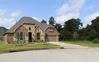 Tomball Single Family Home For Sale: 22915 Goldhurst Lane