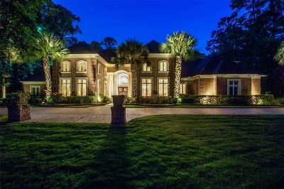 The Woodlands Single Family Home For Sale: 211 N Tranquil Path Drive