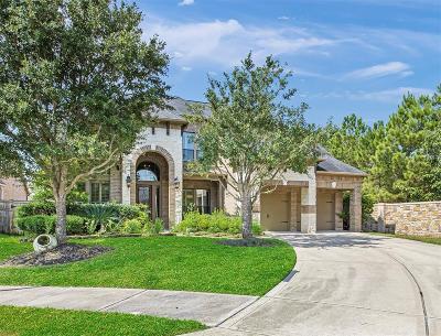 Single Family Home For Sale: 28227 Ridgecreek Cove Lane
