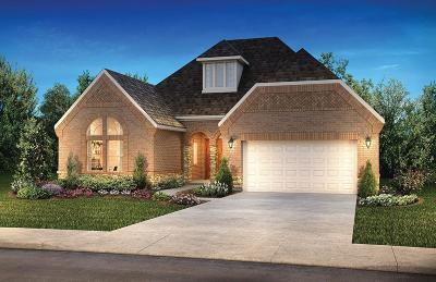 Missouri City Single Family Home For Sale: 10522 Lantana Pass