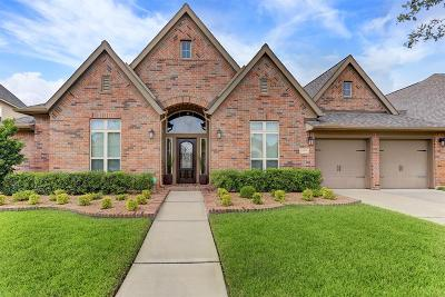 Pearland Single Family Home For Sale: 13909 Morgan Bay Drive