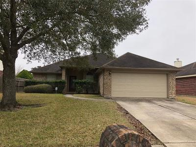Friendswood Rental For Rent: 16615 Lighthouse View Drive