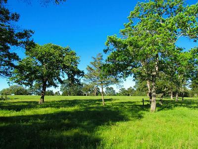 New Ulm Farm & Ranch For Sale: 0000 Texas Star & Walnut