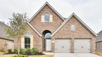 Pearland Single Family Home For Sale: 13213 Sage Meadow Lane