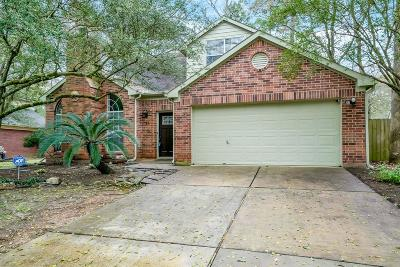 The Woodlands Single Family Home For Sale: 27 Grey Birch Place