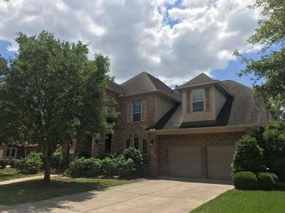 Houston Single Family Home For Sale: 6003 Saratoga Springs Lane