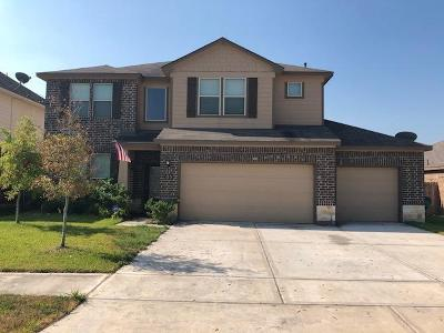 Manvel Single Family Home For Sale: 23 Indian Palms Drive