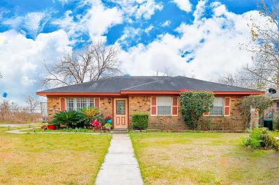 Houston Single Family Home For Sale: 17226 Sunshine Street