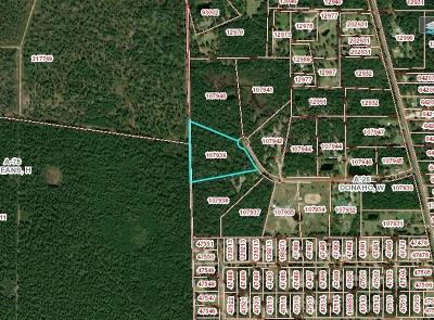 Residential Lots & Land For Sale: County Road 2319