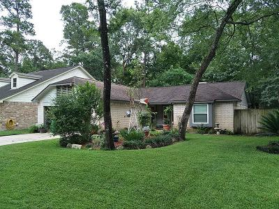 The Woodlands Single Family Home For Sale: 20 W Lance Leaf Road