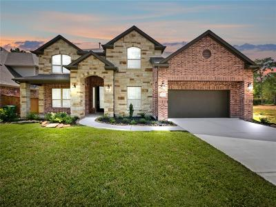 New Caney Single Family Home For Sale: 19264 Yellow Chestnut Drive