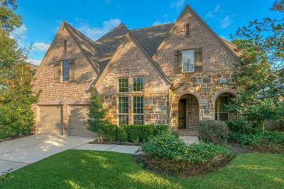 Montgomery Single Family Home For Sale: 150 Stonehedge
