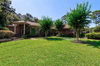 Huffman Single Family Home For Sale: 30210 Commons Scenic View Drive