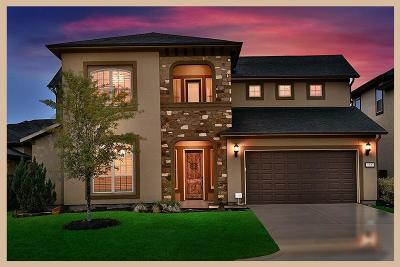 Shenandoah Single Family Home For Sale: 123 Bella Vista