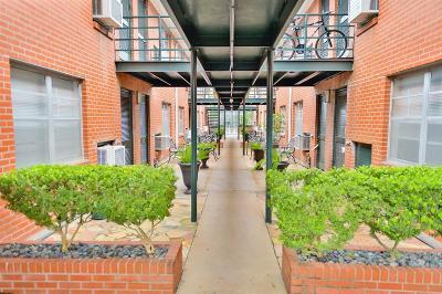 Harris County Rental For Rent: 2211 W Alabama Street #22