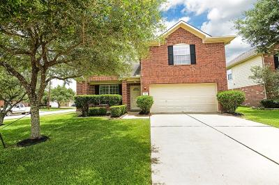 Pearland Single Family Home For Sale: 4101 Seminole Drive