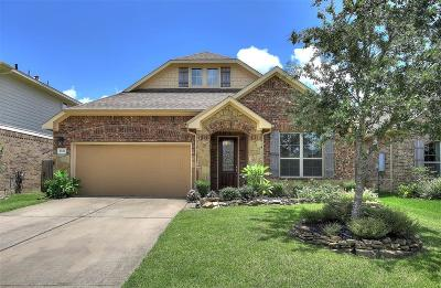 League City Single Family Home For Sale: 4820 N Piares Lane