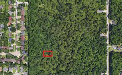 Houston Residential Lots & Land For Sale: Lincoln