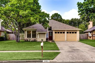 Houston Single Family Home For Sale: 15811 Meadow Village Drive