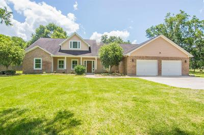 Angleton Single Family Home For Sale: 519 Mill Road