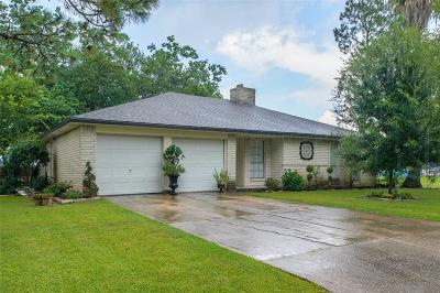 Friendswood Single Family Home For Sale: 207 Brigadoon Lane