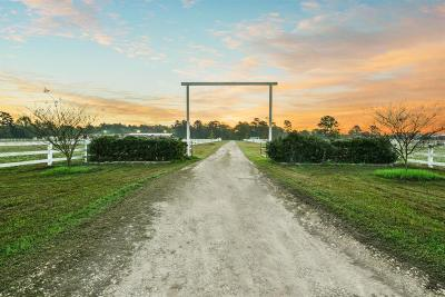 Tomball Country Home/Acreage For Sale: 25630 Hufsmith Cemetery Road