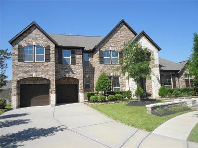 Cypress Single Family Home For Sale: 12007 Cove Hill Lane