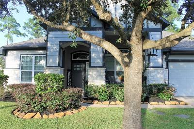 Spring Single Family Home For Sale: 19214 Valiant Woods Drive