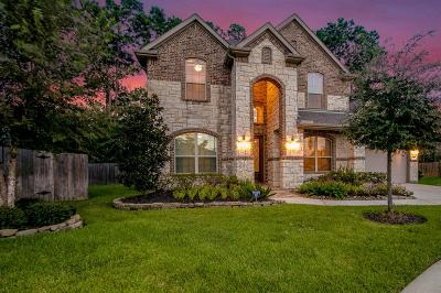 Houston Single Family Home For Sale: 13515 Lake Willoughby Lane