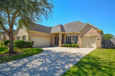 Sugar Land Single Family Home For Sale: 1131 Timber Glen Lane
