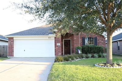 Rosenberg Single Family Home For Sale: 831 Shenandoah Falls Lane
