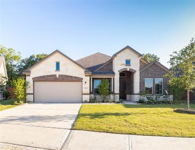 Porter Single Family Home For Sale: 22309 Relaxing Drive