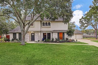 Friendswood Single Family Home For Sale: 904 Evergreen Drive