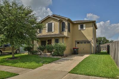 Houston Single Family Home For Sale: 19127 Remington Park Drive