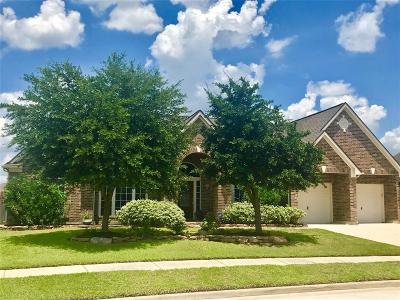 Tomball Single Family Home For Sale: 22810 Wilbur Lane