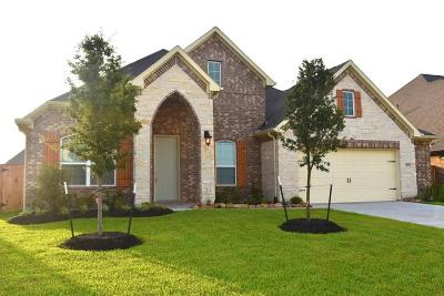 Lakes Of Savannah Single Family Home For Sale: 4611 Bisontine Bay Lane